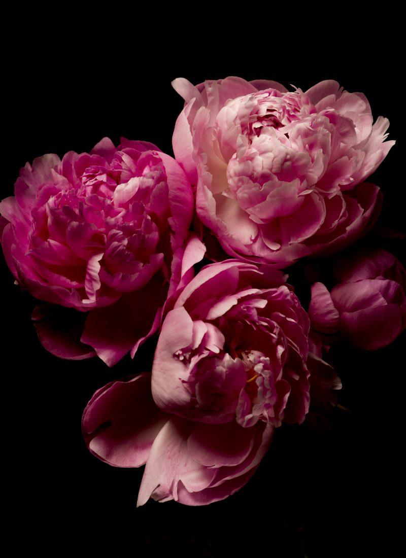 Artful Florals for Spring Décor